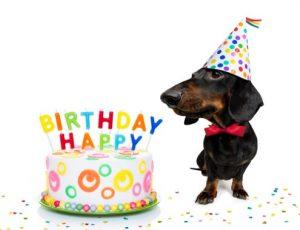 Verjaardag grappig felicitatie
